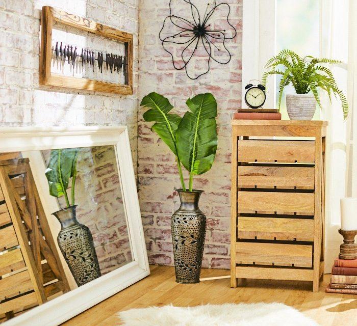 Plant Care Basics: Indoor Plants