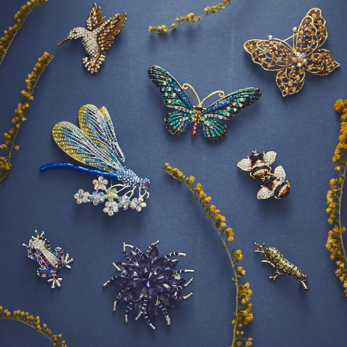 Collection of butterfly, insect and hummingbird brooches on blue background