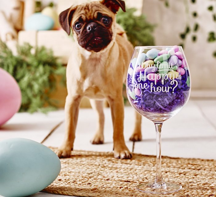 A Dog in the Wedding Party
