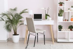 Stylish interior of room with green houseplants and workplace. A work from home essential office space.