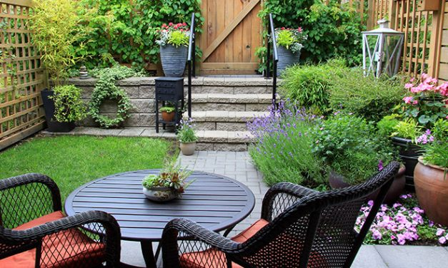 Create a Mini Outdoor Oasis