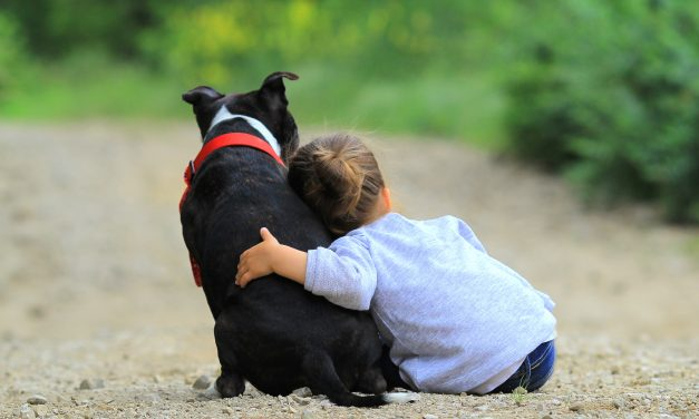 Kids & Pet Loss: Helping Kids Through Pet Loss Grief