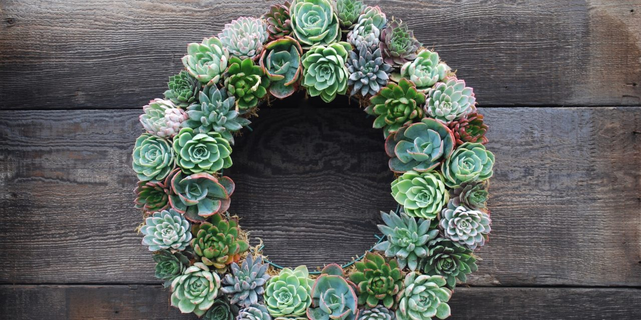 Beautiful Wreath Ideas for Every Season