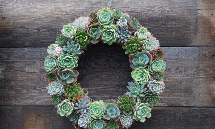 Beautiful Wreath Ideas for Every Season