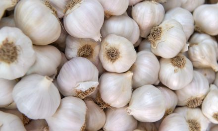 10 Benefits of Fresh Garlic and How to Store It