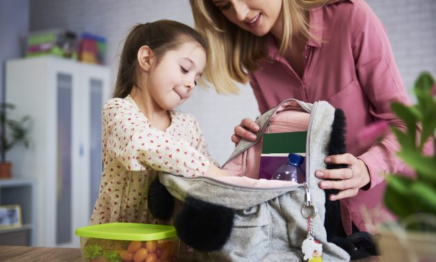 25 Easy School Snacks Ideas for Kids