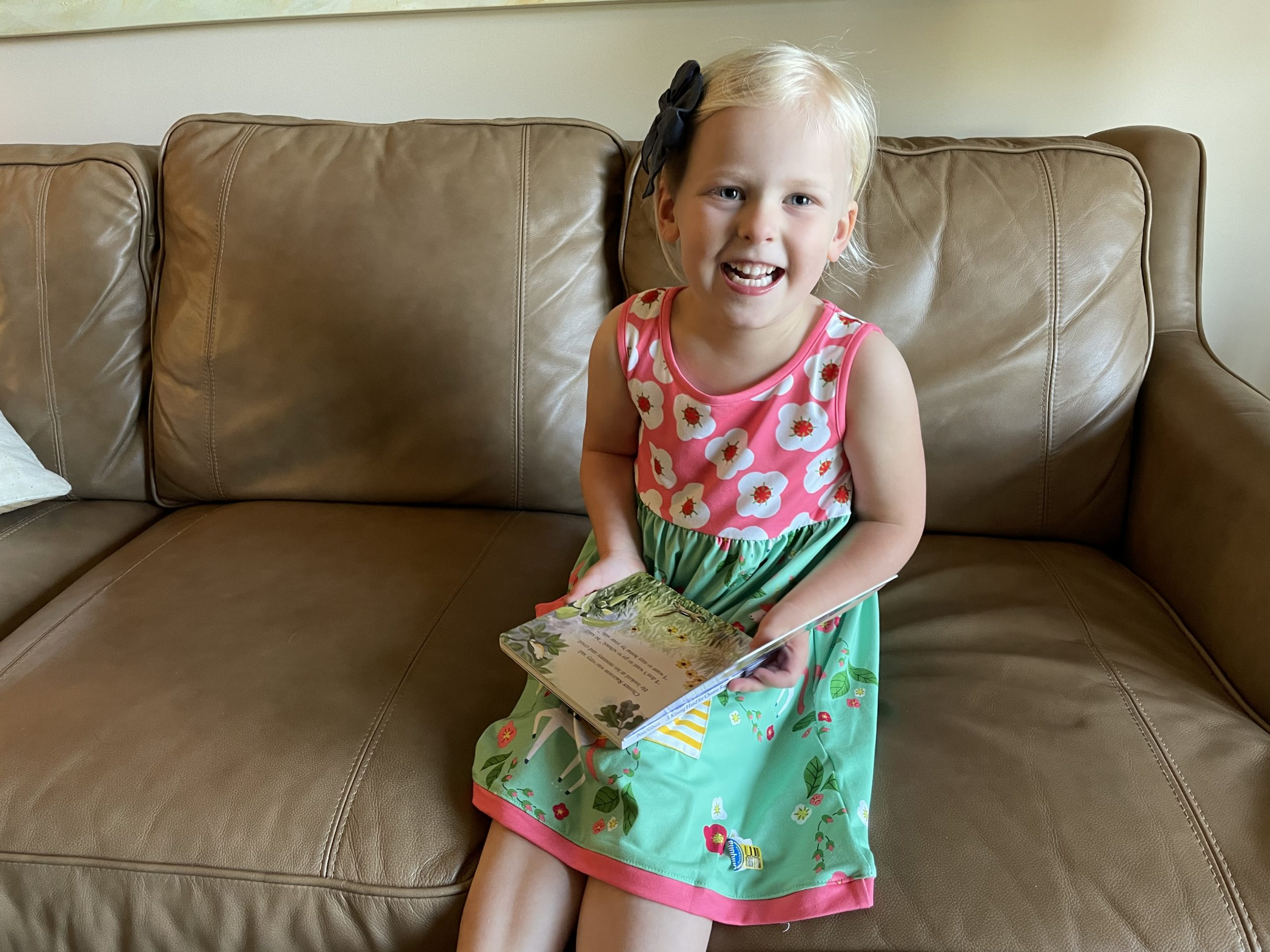 Millie Loves Lily Pink and Green Toddler Dress